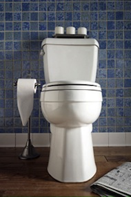 Frisco toilet installation and repair